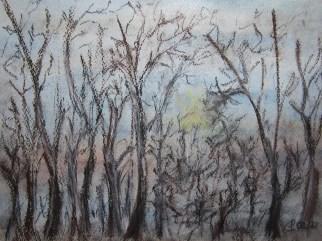 Eiskalter Morgen im Januar, 2018 Aquarell und Pastell, mit Rahmen und Passepartout 40 x 50 cm