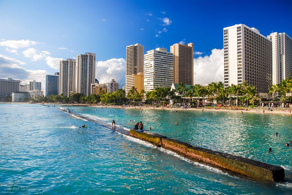Waikiki - Oahu - Hawaii
