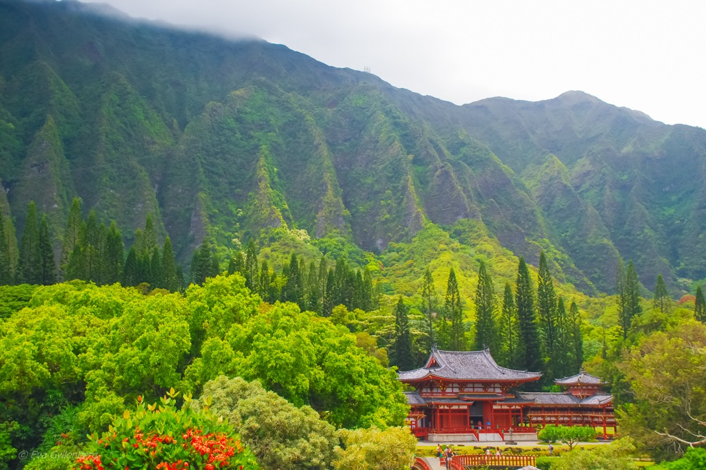 Byodo-In temple - Valley of the temples - Oahu - Hawaii