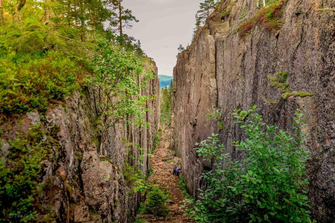 Skuleskogen-Slåttdalsskrevan
