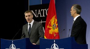 Montenegro Should Remain Russia's Ally as NATO Member – EU Parliamentarian