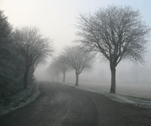 The road to forgiveness and closure