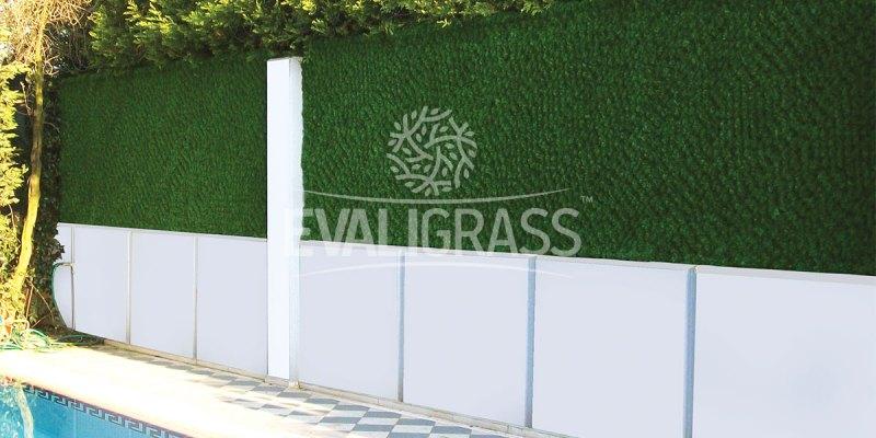 hedge-panel-cost