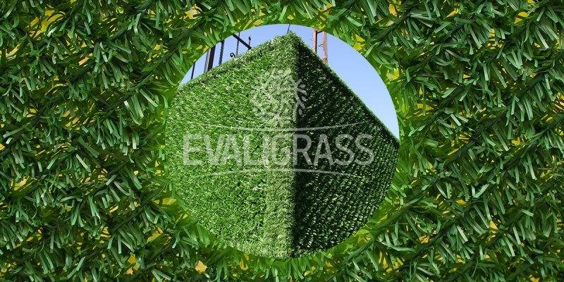 hedge-panels