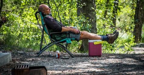 calvo sulla sedia - cos'è la vita