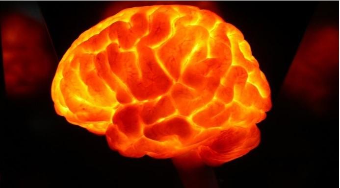 cartografia cerebrale