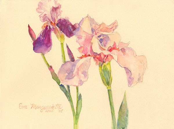 Pink Irises by Eva Margueriette