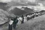 Curso de la historia de la salvación: IV parte:Jorge Alberto Limón Cerecero.