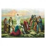 Seguimiento de Jesús parte 2. El discipulado. Audio mp3