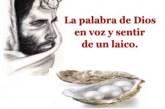 La palabra de Dios  en voz y sentir de un laico: El experto en perlas finas. Audio mp3