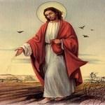 Evangelio San Mateo 13,1-9. Miércoles 24 de Julio de 2013.