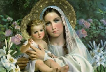 Vayan por todo el mundo y prediquen el Evangelio.               Ss. Francisco                                             Hora Santa  Parroquia de San Pío X