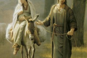 Egipto vida  y resguardo. San Mateo 2, 13-15. 19-23.