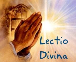 LECTIO DIVINA40