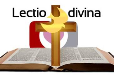 Lectio 41: Los rostros de la lectio divina.