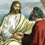 Evangelio  San Marcos 10,28-31. Martes 28 de Febrero de 2017. Misa De Todos los Santos.