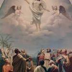 Evangelio San Mateo 28,16-20. Domingo 28 de Mayo de 2017. Solemnidad de LA ASCENCIÓN DEL SEÑOR.