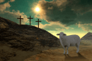 El cordero De Dios invita a seguirlo y a conocerlo Jn 1, 35-42.