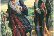 Evangelio San Marcos 10, 35-45. Domingo 17 de Octubre de 2021.