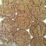 Evan's Choc Chip Cookies