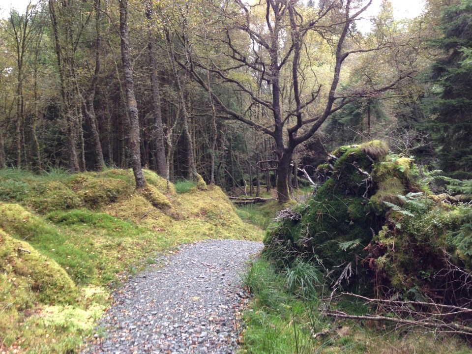 The low path of out of Rowardennan