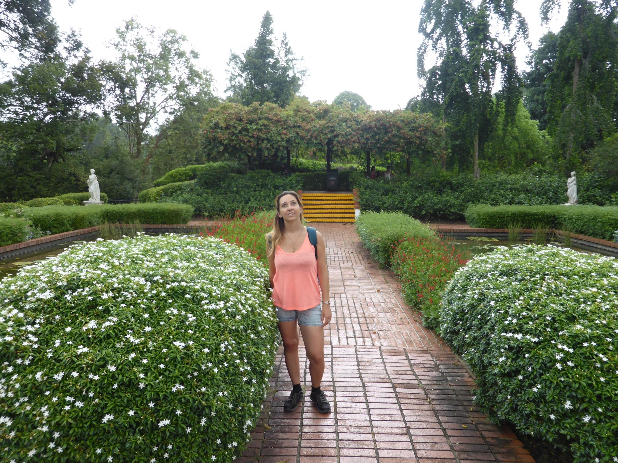 jardin botanique Singapour