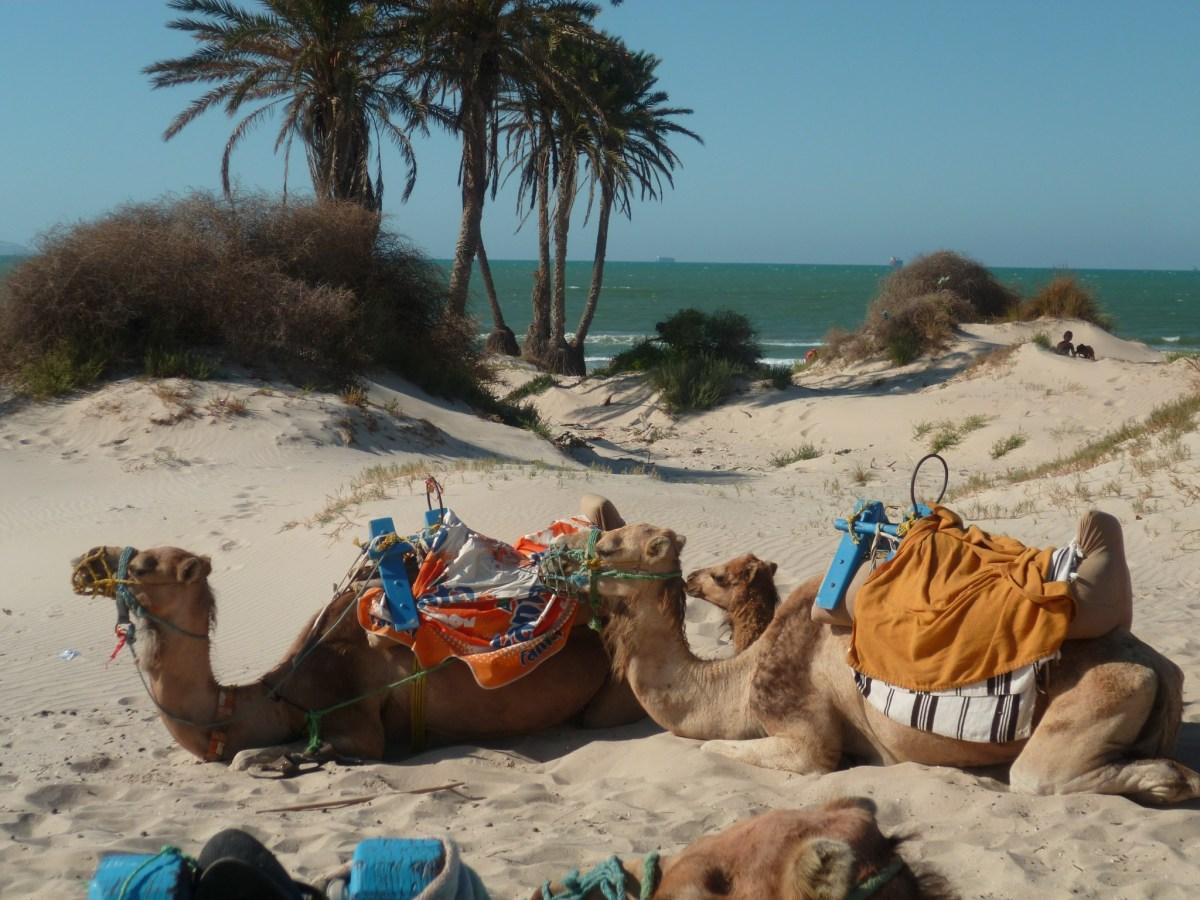 Avantages et Inconvénients d'un All Inclusive : mon expérience en Tunisie