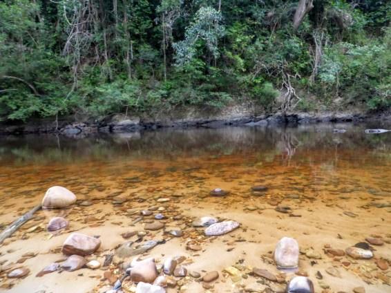 taman negara black river