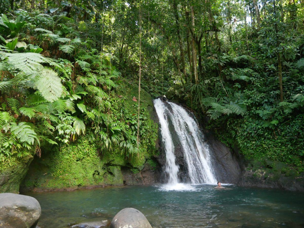 14 Lieux à voir sur la Basse-Terre