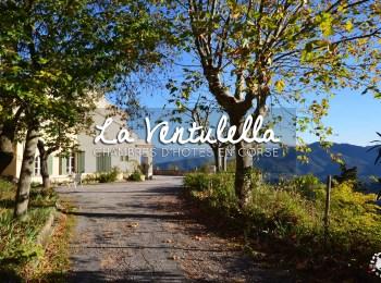 Chambre d'hôtes en Corse: Bienvenue à La Ventulella de Moltifao !