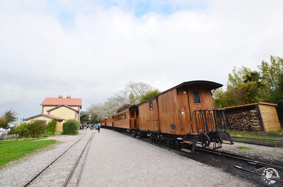 Train à vapeur Baie de Somme