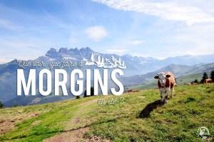 Morgins