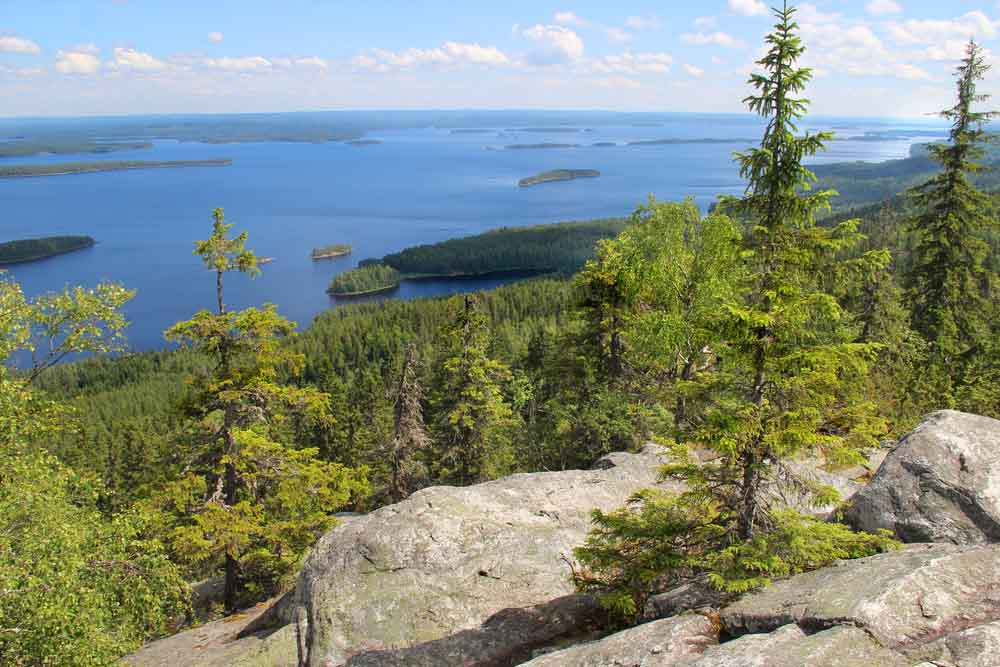 Koli National Park Carélie