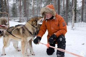 Reijo Jääskeläinen