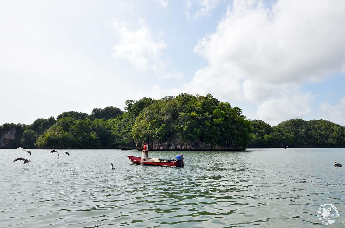 Los Haitises pêcheur