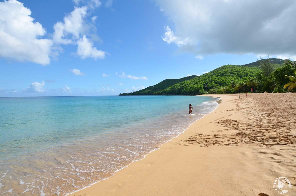 Grande Anse Deshaies