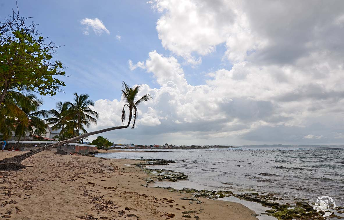 Le Moule Guadeloupe