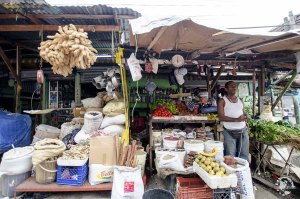 Mercado Modelo Saint Domingue