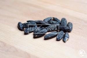 fève Tonka
