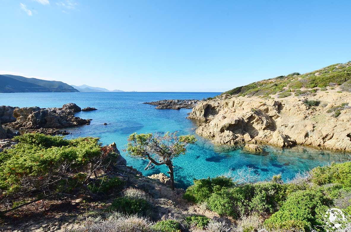 Ostriconi, Corse