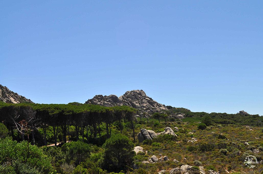 Île de Caprera Sardaigne