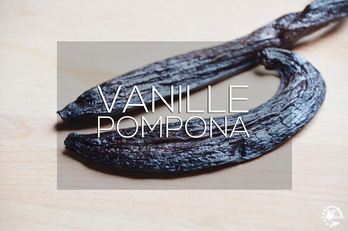 Vanille Pompona