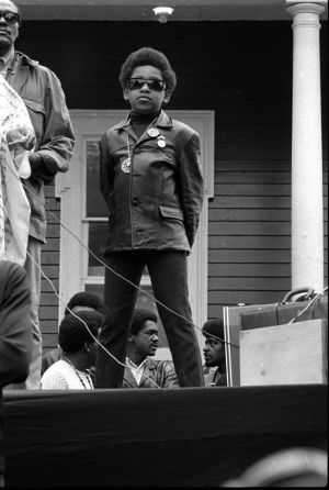 Black-Panthers-016-06