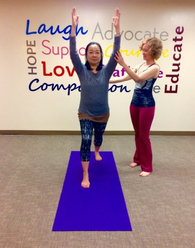 Yoga Therapy (3)