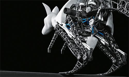 6_Kangourou Bionic