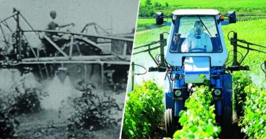 Pesticides - rien n'a changé en 50 ans