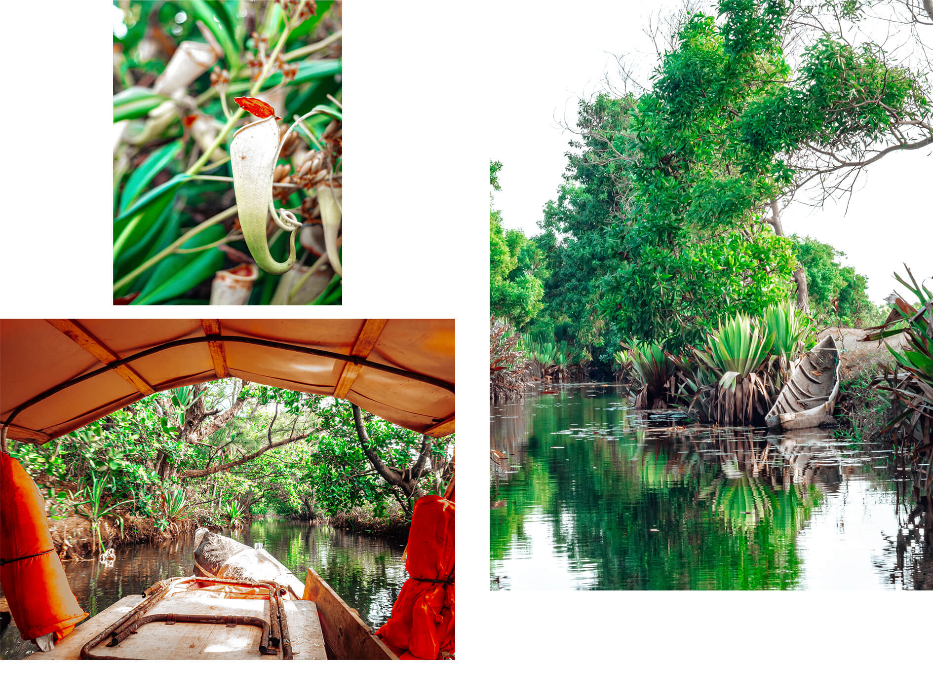Canal des Pangalanes miljöö