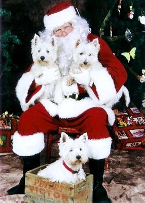 Pose Your Pet With Santa Sioux Falls SD Nov 14 2015