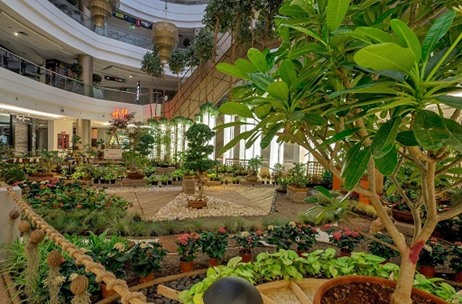 Phoenix Marketcity Kurla Teams Up With Multiple Renowned Artists To Create Bloomcity India News Updates On Eventfaqs