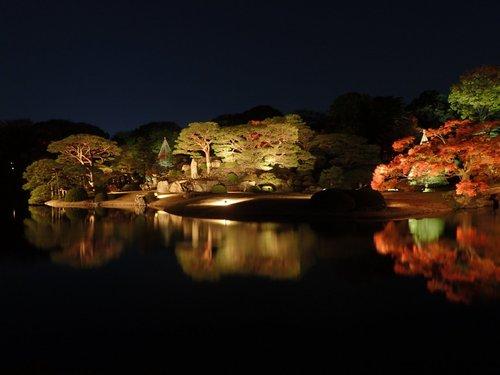 六義園「紅葉と大名庭園のライトアップ」